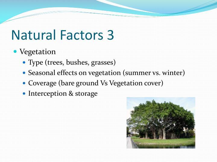 Natural Factors 3
