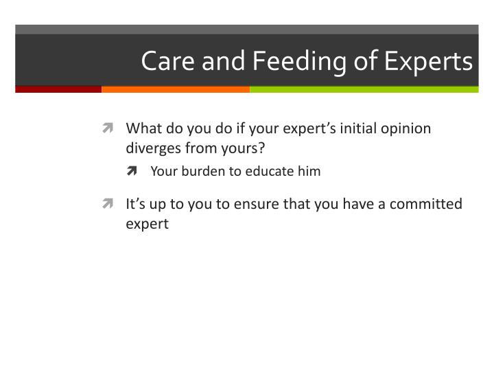Care and Feeding of Experts