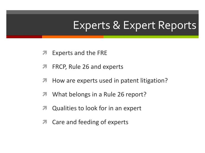 experts expert reports