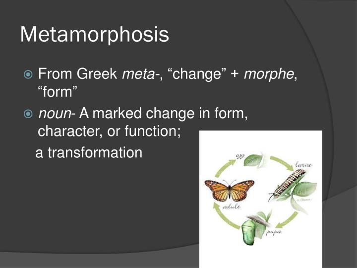 Metamorphosis