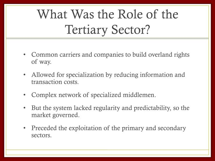 What Was the Role of the Tertiary Sector?