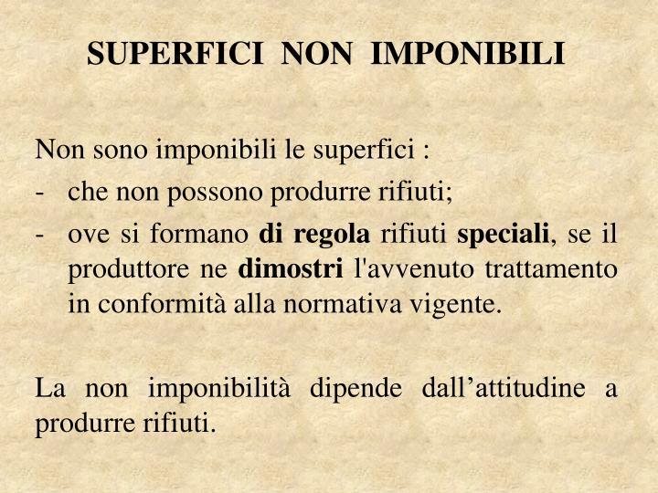 SUPERFICI  NON  IMPONIBILI