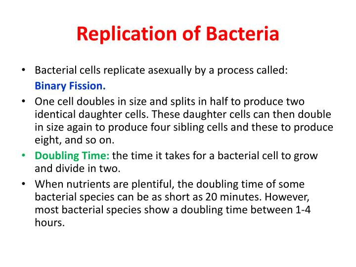 Replication of Bacteria