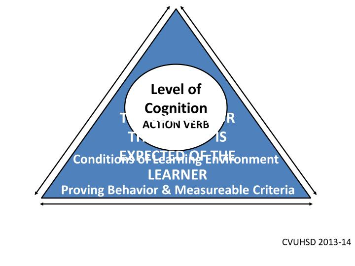 Level of Cognition