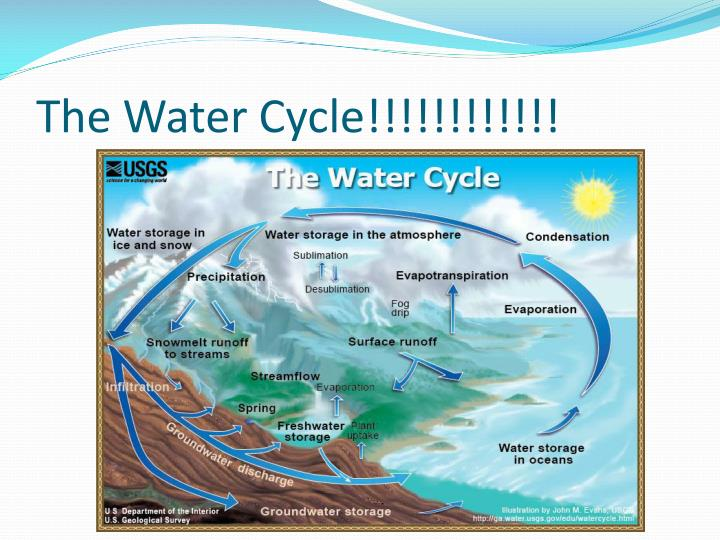 The Water Cycle!!!!!!!!!!!!