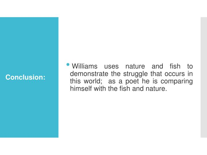 Williams uses nature and fish to demonstrate the struggle that occurs in this world;  as a poet he is comparing himself with the fish and nature.