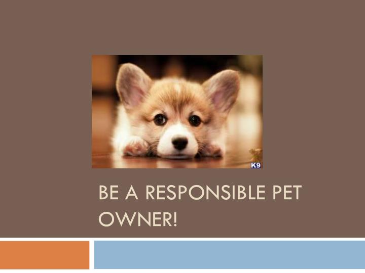 Be A RESPONSIBLE PET OWNER!
