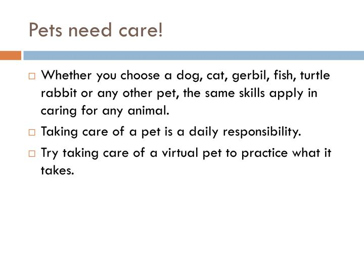 Pets need care!