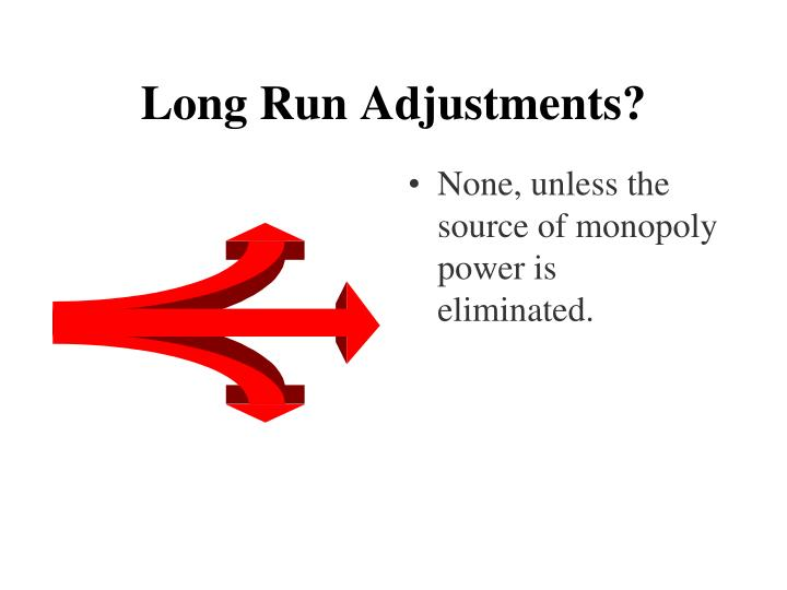 Long Run Adjustments?