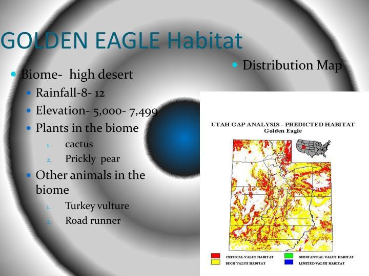 GOLDEN EAGLE Habitat