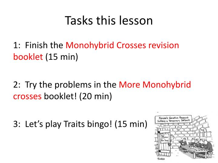 Tasks this lesson
