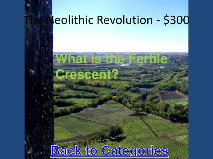 The Neolithic Revolution - $300