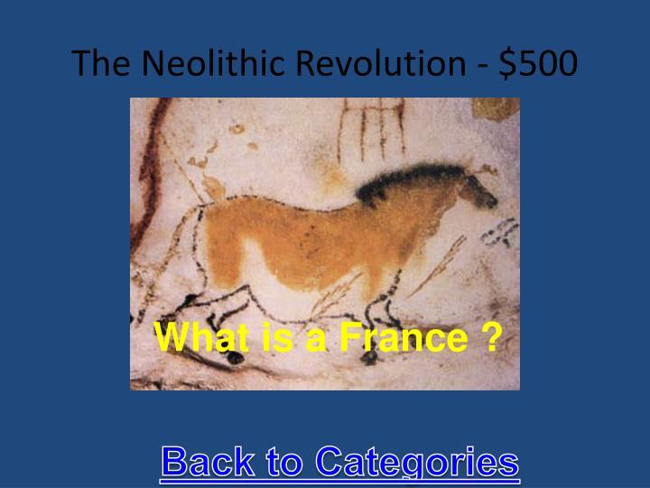 The Neolithic Revolution - $500