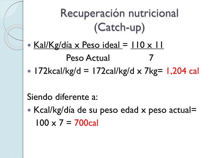 Recuperacin nutricional