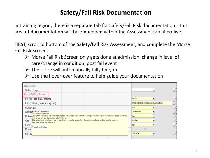 Safety/Fall Risk Documentation