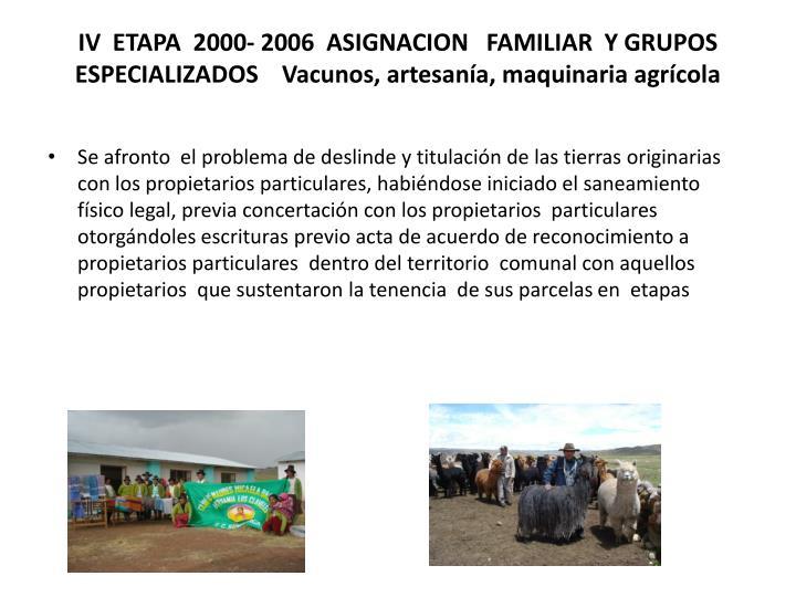 IV  ETAPA  2000- 2006  ASIGNACION   FAMILIAR  Y GRUPOS  ESPECIALIZADOS    Vacunos, artesanía, maquinaria agrícola