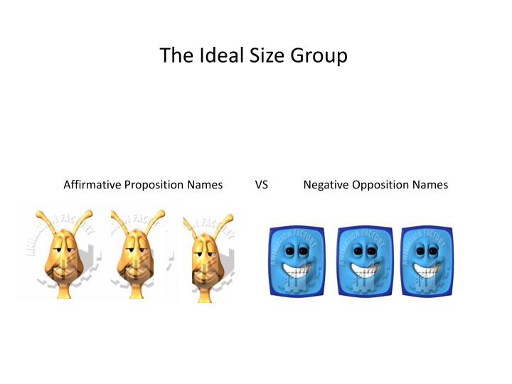 The Ideal Size Group