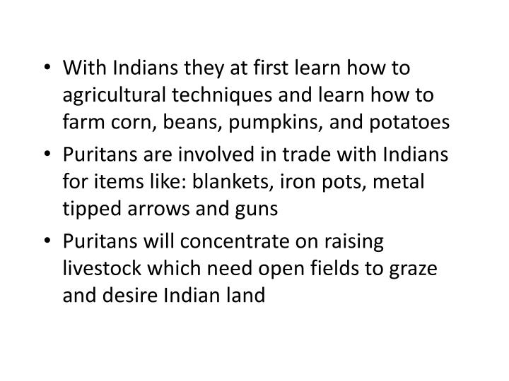 With Indians they at first learn how to agricultural techniques and learn how to farm corn, beans, pumpkins, and potatoes
