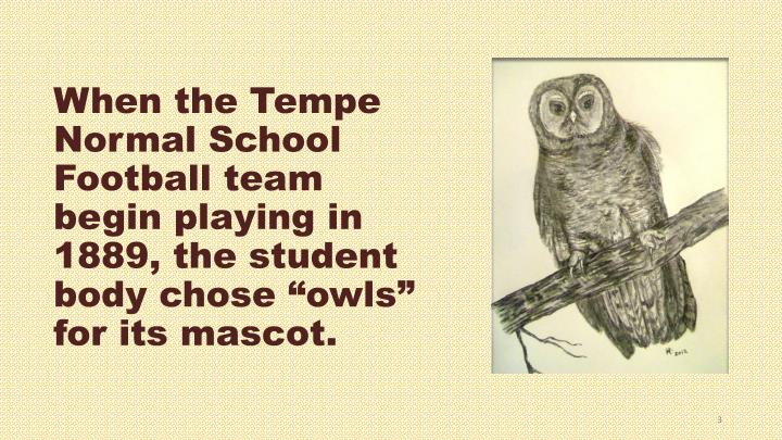 "When the Tempe Normal School Football team begin playing in 1889, the student body chose ""owls"" for its mascot."