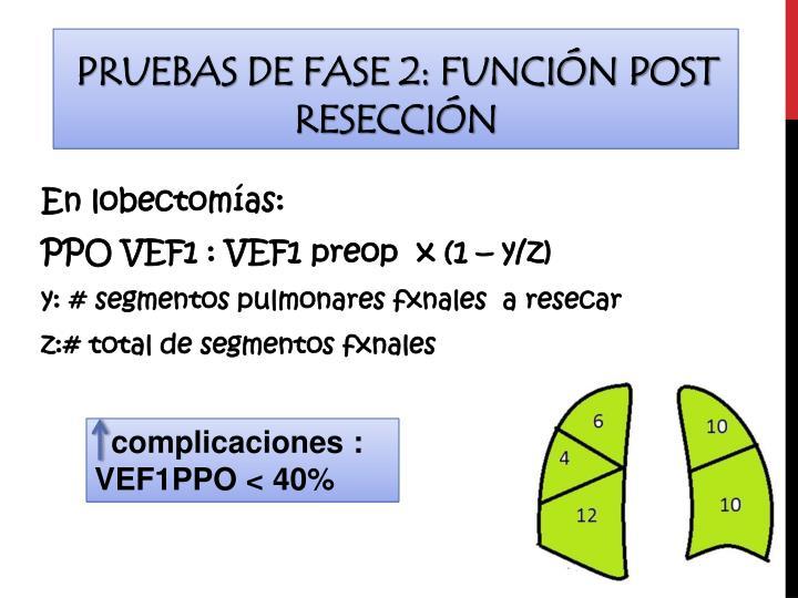 Pruebas de fase 2: Función post resección