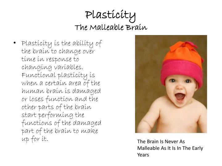 Plasticity