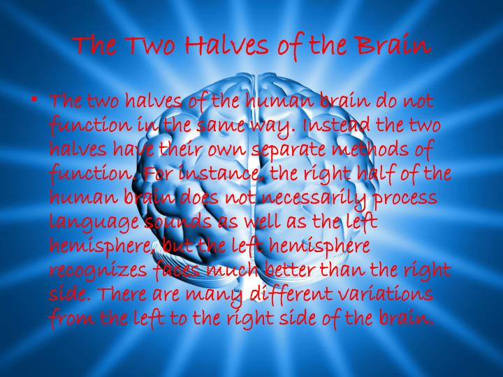 The two halves of the brain
