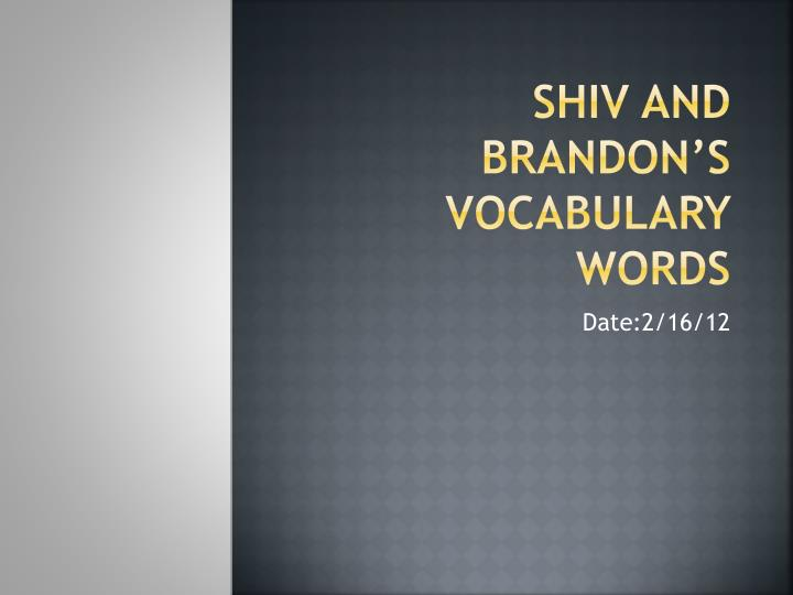 Shiv and brandon s vocabulary words