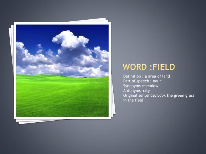 Word :field