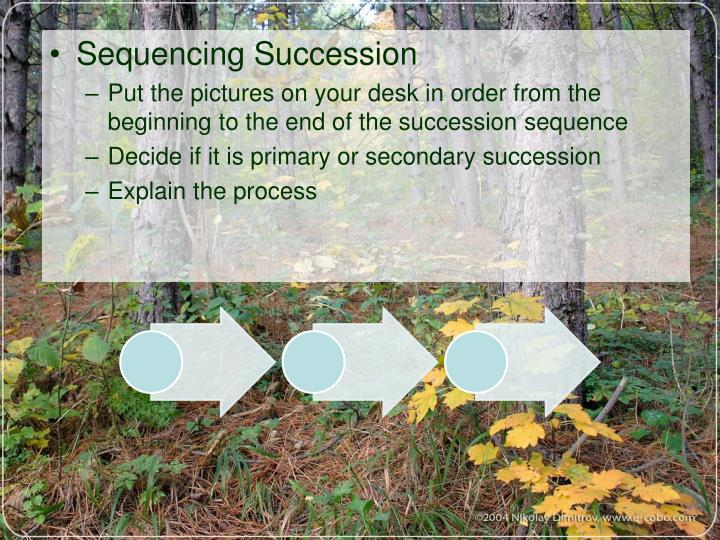Sequencing Succession