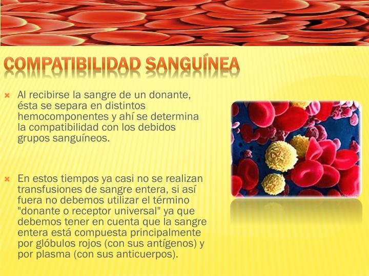 Al recibirse la sangre de un donante, ésta se separa en distintos hemocomponentes y ahí se determina la compatibilidad con los debidos grupos sanguíneos.