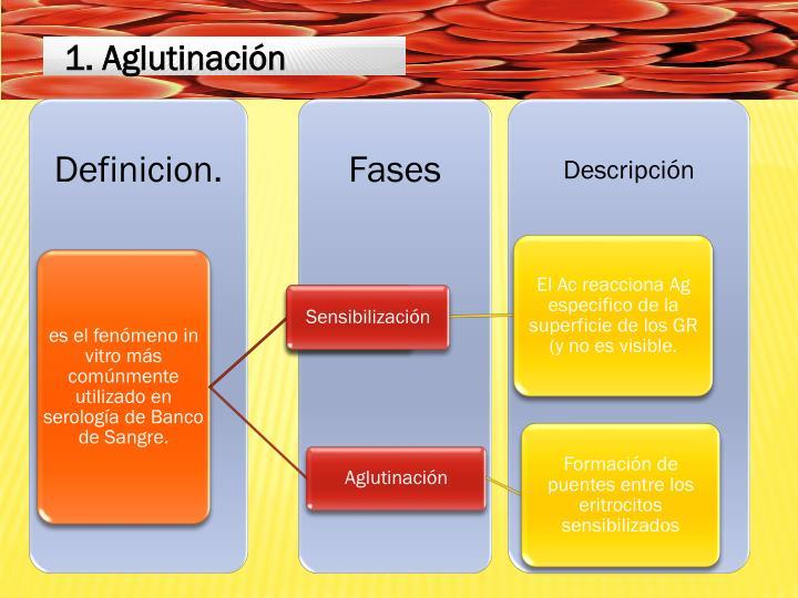 1. Aglutinación