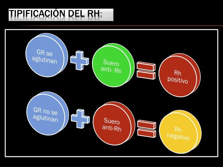 Tipificación del Rh