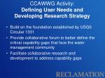 ccawwg activity defining user needs and developing research strategy