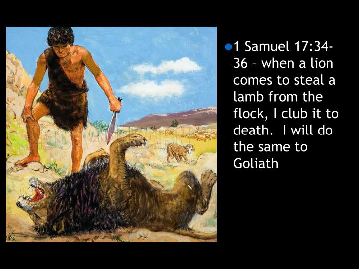 1 Samuel 17:34-36 – when a lion comes to steal a lamb from the flock, I club it to death.  I will do the same to Goliath