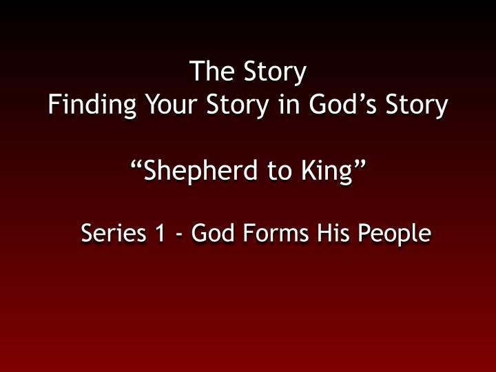 The story finding your story in god s story shepherd to king