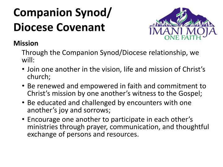 Companion Synod/