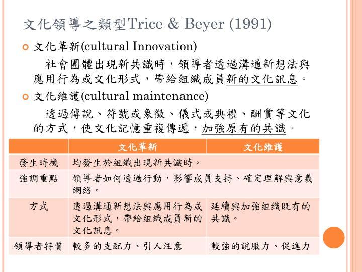 文化領導之類型
