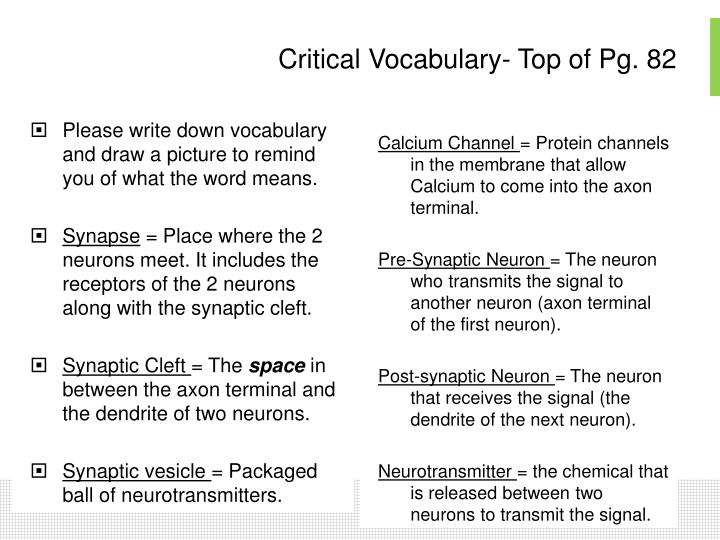 Critical Vocabulary- Top of Pg. 82