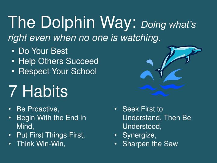 The Dolphin Way: