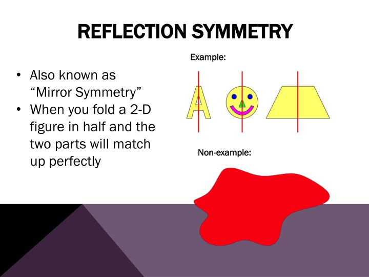 Reflection Symmetry