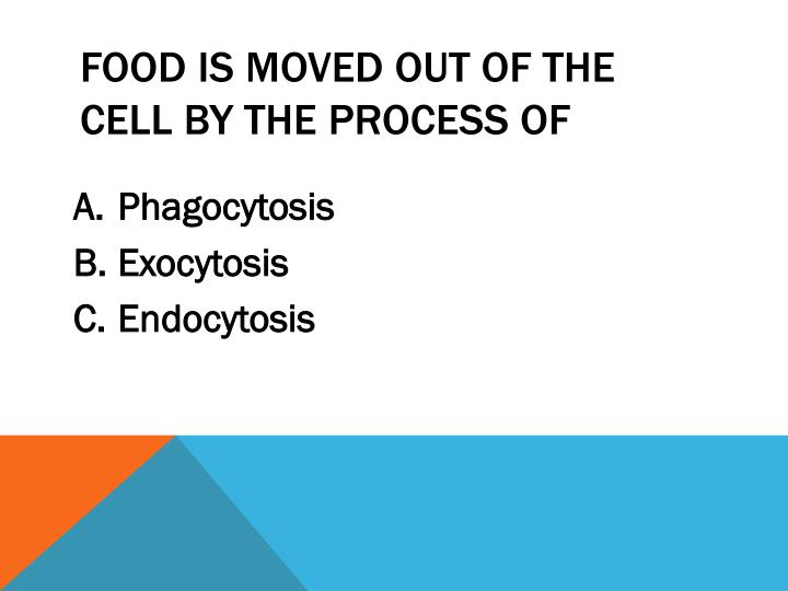 Food is moved out of the cell by the process of
