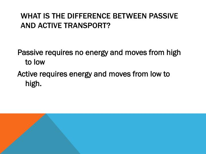 What is the difference between passive and active transport?