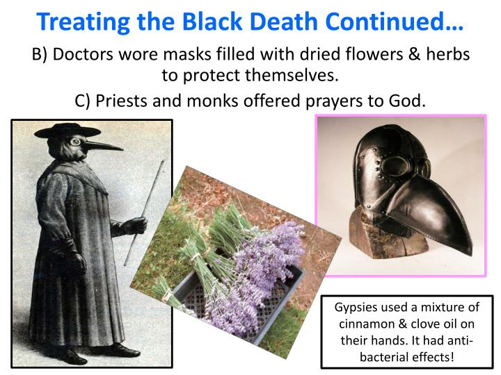 Treating the Black Death Continued…