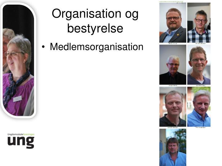 Organisation og bestyrelse