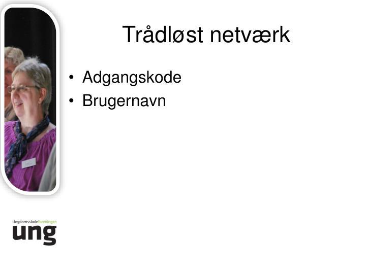 Trådløst netværk
