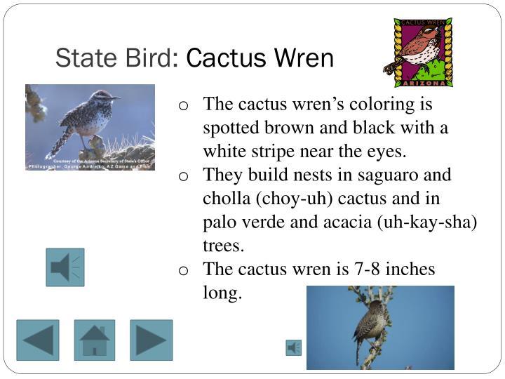 State Bird: