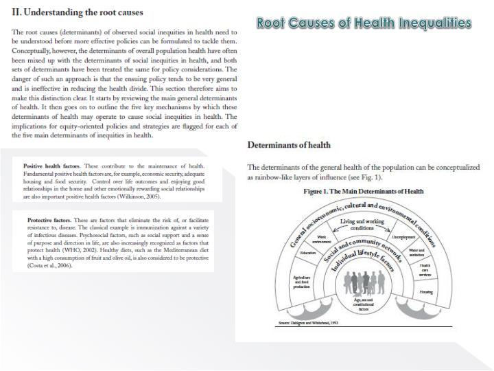 Root Causes of Health Inequalities