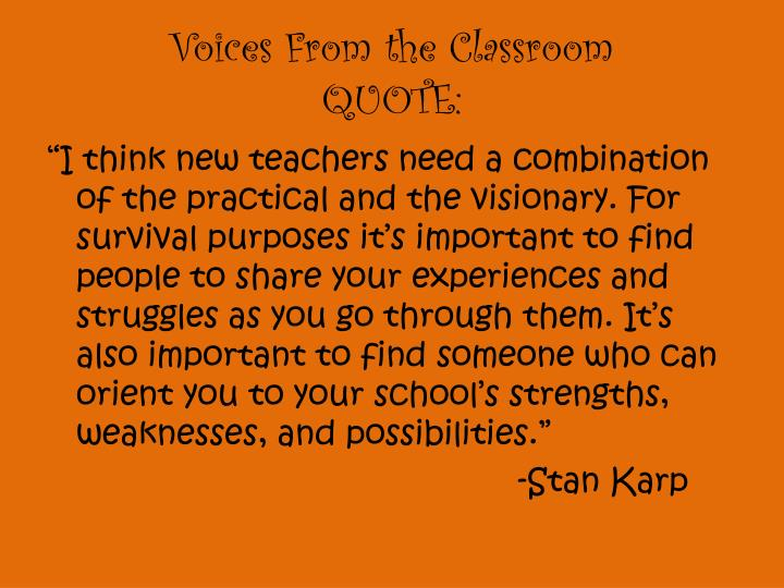 Voices From the Classroom