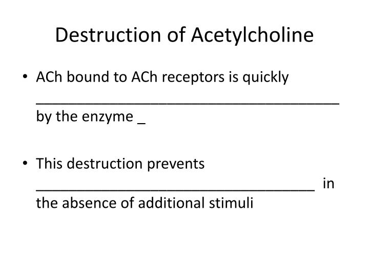 Destruction of Acetylcholine