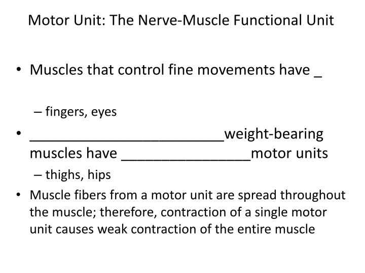 Motor Unit: The Nerve-Muscle Functional Unit